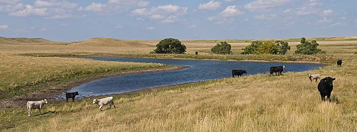 South Dakota Real Estate for sale, Ranches, Farms, Land and