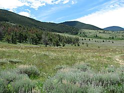Red Lodge, montana, outdoors, fishing , hunting, wildlife, for sale, property, acres
