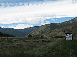 Red Lodge, Montana, Wildlife, Beartooth Mountains, custer national forest, nature lover