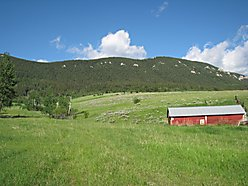 acre, for sale, red lodge, montana, beartooth mountains, pryor mountains, creek, national forest,  for sale