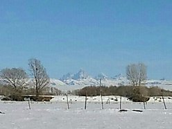 creek, teton mountains, fenced, acre, lot, irrigation, no covenants, build, St. Anthony, Idaho,      for sale