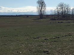 St Anthony, Idaho, water, irrigation, no covenants, fenced, property, for sale,  for sale