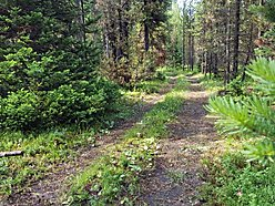 lot, recreation, acre, Island Park, Idaho, no covenants, public land access, idaho state land,  for sale