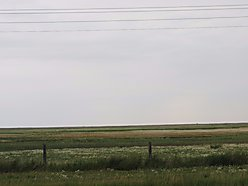 acres, farmland, for sale, Choteau, Montana, irrigations, hay, Highway 220, pasture, barley for sale