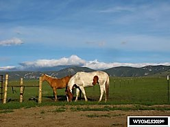 land, acres, for sale, buffalo, wyoming, water rights, well, horses, mountain view, private, views,  for sale