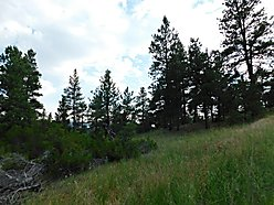 land, views, for sale, cascade, montana, acres, hike, hunt, missouri river, dearborn river, holter,  for sale