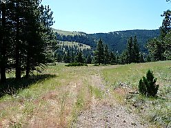 land, home, for sale, wolf creek, montana, wildlife, spring, creek, continental divide, public land, for sale
