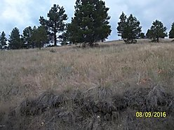 land, for sale, cascade, montana, buildling lot, acre, views, wildlife, year round acces, cabin,  for sale