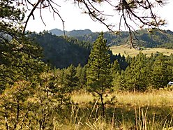 land, for sale, acres, dearborn river, cascade, montana, craig, great falls, wildlife, views, for sale