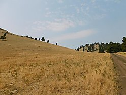 land, for sale, cascade, montana, well, barn, acres, missouri river, holter lake, flathead lake,  for sale