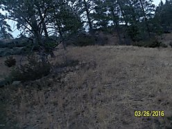land, acre, for sale, cascade, montana, dearborn river, wildlife, hunting, hiking, fishing,  for sale