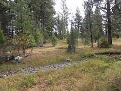 acres, state lands, stonewall creek, property, lincoln montana, hunting, fishing, national forest, creek,