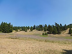 land, for sale, camper, acre, cascade, montana, blm, missouri river, seasonal creek, generator,  for sale