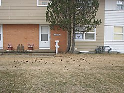St.Marie, Condo, for sale, hunting, fishing, property, Glasgow, Montana
