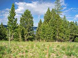 lot. lots. acres, parcels, build, power, phone, camp, georgetown lake, lake, discovery ski basin, golfing, golf course, investment, seller financing, anaconda, montana,