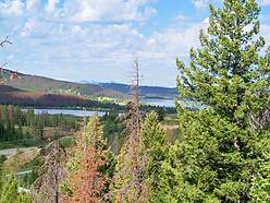 georgetown lake, montana, anaconda, acre, recreational, seller financing, lot, for sale, property, for sale