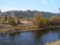 middle fork, rock creek, creek, acres, views, montana, creek frontage, tributary, elk, whitetail, build, mule deer, fishing, mountain lion, rainbows, browns, cutthroats, property,