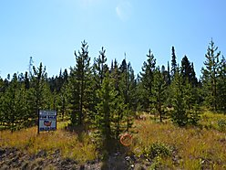 elk meadows, home, acre, property, discovery ski basin, anaconda, philipsburg, montana, recreation, for sale