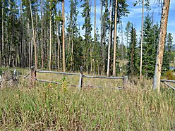 property, acres, Forest Serviece, Public Land, Spring Hill, Anaconda, Montana, well, septic for sale