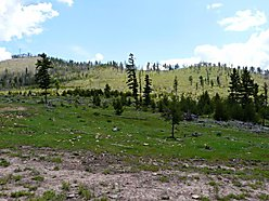 land, acres, for sale, missoula, montana, clark fork valley, blm, rock creek, fishing, wildlife,  for sale