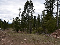 land, acre, for sale, philipsburg, montana, georgetown lake, rock creek, fish, hunt, power, well,  for sale