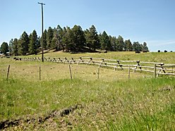 land, for sale, philipsburg, montana, anaconda pintler wilderness, rock creek, georgetown lake,  for sale