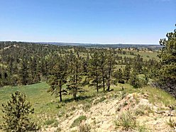 acres, land, for sale, billings, montana, wildlife, elk, deer, views, meadow, sarpy creek ranch,  for sale