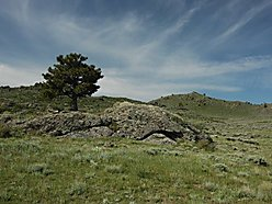 land, for sale, laramie, wyoming, denver, colorado, views, hunt, sybille creek canyon, deer, elk,  for sale