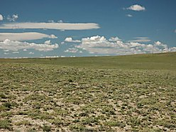 lot, land, for sale, acres, casper, wyoming, pine mountain ranch, views, wildlife, year round, well, for sale
