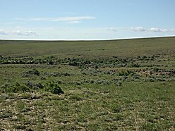 land, for sale, pine mountain ranch, casper, wyoming, year round access, power, trout, wildlife,  for sale