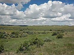 land, for sale, casper, wyoming, year round access, wildlife, views, acreage, build, power, cabin,  for sale