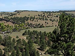 land, for sale, wyoming, casper, pine mountain ranch, views, wildlife, hunt, fish, elk, deer,  for sale