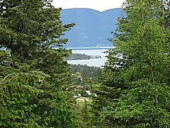 timber, acres, flathead lake, rollins montana, easy access, year round, home, cabin, property, state land, mission mountains, mountain, stream, skiing, lake, building sites,