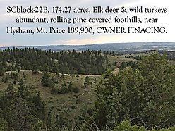 land, for sale, montana, wildlife, mule deer, turkey, elk, views, sarpy creek ranch, seller terms,  for sale