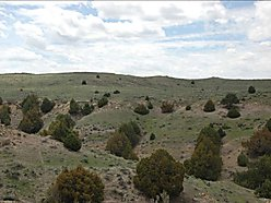 land, for sale, acres, wyoming, public land, hunting, views, hat creek breaks, cedar canyon ranch,  for sale
