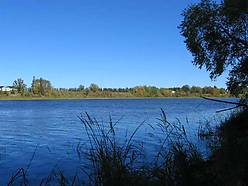 development, rainy river, land, baudette minnesota, international falls, lot, lots, wooded acres, acres, owner financing, river, build,
