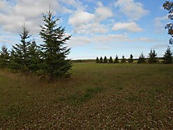 acre, lot, zippel bay, property. creek, lake of the woods, resort, state park, minnesota, for sale