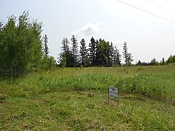 Baudette, Minnesota farmland, acres, tillable, ,
