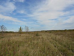 property, acres, trees, building, cabin, land, wildlife, area, contract, CRP, private land, private, for sale