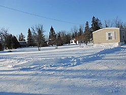 trees, property, blacktop, Baudette, Minnesota, walleye, town, Rainy river, lake of the woods, for sale