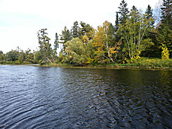 waterfront, lot, for sale, Wabanica Creek, Baudette, Minnesota, property, land, white pine,  for sale