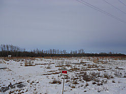 acres, property, land, for sale, hunting, Williams, Minnesota, Graceton Bog, state land, wildlife, for sale