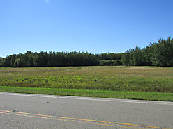 land, parcel, acre, for sale, baudette, minnesota, hunt, timber, farm, deer, grouse, recreation,  for sale