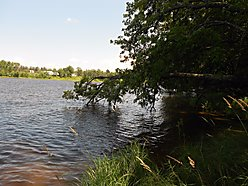 land, for sale, rainy river, baudette, minnesota, silver lake, waterfront, river frontage, views,  for sale