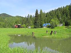 hunting, fishing, acre, ranch, stream, st joe river, property, timbered, mountains, st maries idaho, for sale