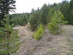 build, cabin, camping, recreational, acre, parcel, hunting, fishing, st. maries, idaho, creek, for sale