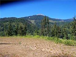 acres, recreational, build, cabin, fishing, building, st joe river, st maries idaho, for sale