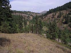 home, parcel, property, building sites, creek, mountain, views, timber, st maries, idaho, acres, for sale
