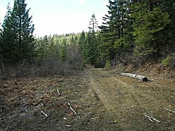 moutain, acres, views, st. maries, idaho, treed, offthe grid, property, hunter, building sites,  for sale