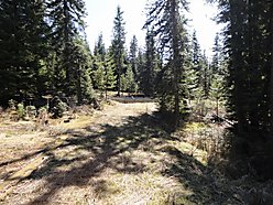 Acre, Land, property, Idaho, St.Maries, wildlife, mountain, owner financing,  for sale